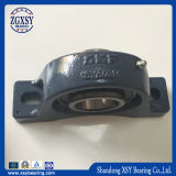 Cast Iron Bearing Housing Mounted Bearing Pillow Block Bearing