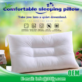 Wholesale Cotton with Plain Dyed Pillow on Sale