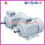 220 Kw Low Voltage Three Phase Machine Motor Electric