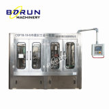 Turnkey Complete Plastic Bottled Mineral Pure Water Filling Line