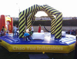 Commercial Grade Inflatable Sport Game for Sale Cysp-656)