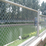 PVC Coated Security Fencing Chain Link Fence for Garden/Playground Good Price