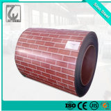 All Ral Color Prepainted Galvanized Color Coated Steel Coil PPGI