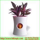 Self Watering Pot, Automatic Watering Flower Pot