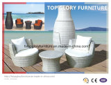 Garden Sofa Set Vase Wicker Sofa Outdoor Furniture (TGBS-012)