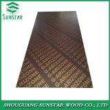 Ffp Poplar/Hardwood/Finger Joint/Bamboo Black/Brown/Red/Green/Anti-Slip/Waterproof Film Faced Marine Plywood Sheets