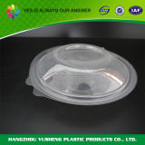 Customized Dispossable Plastic Food Packaging Pastry Box