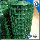 Green Powder Coated Welded Wire Mesh Fence Mesh
