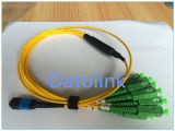 Jumper MPO Female 3.0mm- Sc/APC 2.0mm for Each Branch Cable12fo 9/125 OS2 1m LSZH