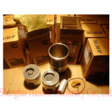 Cummins 6CT ISC engine motor 3802281 3919565 3914368 3802398 piston