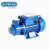 Iron Cast Brass Impeller Electric Peripheral Vortex Micro Auto Surface Water Pump Graden Pump for Agriculture Irrigation (QB60)