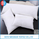 Wholesale Variety of Different Styles Down Feather Cushion/Pillow Insert