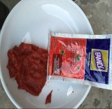 Hot Selling Excellent Quality Tomato Paste in Sachet