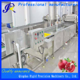 Industrial Automatic Washer Vegetable Cleaning Machine Fruit Washing Machine