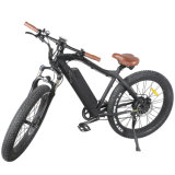 2019 New Fat Tire Mountain Electric Bike with Motor 48V 500W