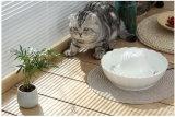 Cat and Dog Water Fountain Pet Waterer Dispenser Water Feeder Lotus Porcelain White