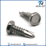 304/316/410 Stainless Steel Indented Hex Head Self Drilling Tek Screw