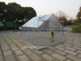 Hobby Greenhouse for Garden (SW808)