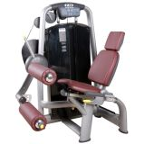 Dhz Seated Leg Curl/Chinese Manufacturer/Commercial Gym Machines