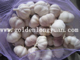 4.5cm Normal White Garlic Packed with 10kg Mesh Bag