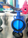 Painting Disc Butterfly Valve with Handle Lever