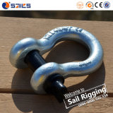China Manufacturing Bow Shackle G209 with Clevis Pin
