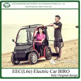 Electric Small Cars