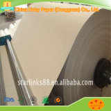 Best Price and Good Quality Brown Kraft Paper for Greenhouse Cellulose Pad