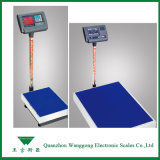 Electronic Bench Weighing Scale