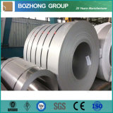 Grade 304, 316L, 321, 2205 Stainless Steel Coil