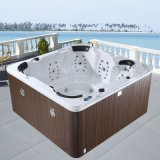 Monalisa Computer Control Outdoor SPA Whirlpool Hot Tub (M-3321A)