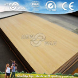 1220X2440mm 4X8 HPL Compact Laminate Board