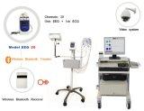 EEG (Routine EEG System & Ambulatory EEG System)