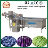 Ce Certificate Automatic Ozone Bubble Fruit & Vegetable Washer System