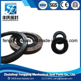 NBR FKM Tc Double Lip Oil Seal Hydraulic Rubber Seal Ring