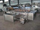 Industrial Fruit Washing Machine/Dragon Fruit Cleaning Machine