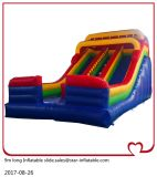 Factory Professional Supplier Giant Inflatable Dry Slide