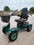 Four Wheel Single Seat Electric Golf Buggy