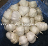 2016 New Crop Fresh Garlic