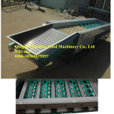 Apple and Orange Washing, Waxing and Sorting Machine