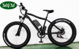 Fat Tire Snow Bike Big Power Electric Bicycle