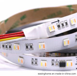Digital 5m-15m Rgbww LED Rigid Flexible LED Strip Light CCT>90 5050SMD 5 Colors Chips in 1 LED Colorful Strip Light