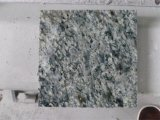 Chinese Green Granite Tiles/Slabs/Countertops Cheap Granirte Flooring