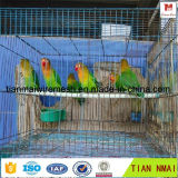 Parrot Cage /Bird Cage/ Rabbit Cage for Export Quality