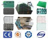 EU Standard PE/PP/Polyester/Nylon/Plastic Scaffolding/Cargo/Fishing/Fish/Bird/Poultry/Volleyball/Tennis/Football/Baseball/Building Construction Safety Netting