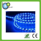 Wholesale Ultra Bright Cheap LED Strip Lights