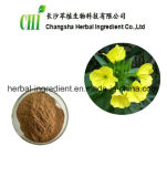 100%Natural Evening Primrose Extract Powder, Oenothera Biennis Seed