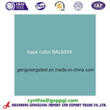 Color Coating Steel Sheets in Coils PPGI Back Color Ral6034