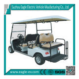 Electric Golf Buggies, 6 Seats, with Rear Foldable Seat, Eg2048ksz