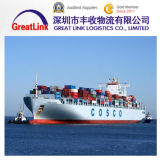 Fast and Cheap Sea Freight Logistics Service From China to Salt Lake, Ut